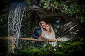 Erica & Patrick's Butterfly Conservatory wedding