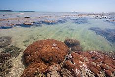 Augustus Island