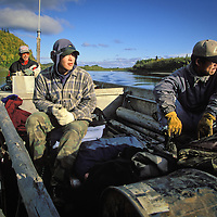 Subsistence hunters search the bank during a fall moose hunt along the Kuskokwim River near Aniak