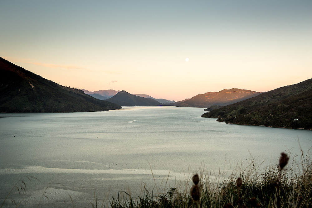 Marlborough Sounds Marinas, February 2014.<br /> Copyright: Gareth Cooke/Subzero Images