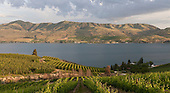 Lake Chelan area wineries