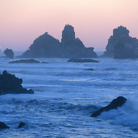 Paparoa Coast near Greymouth, West Coast, South Island, New Zealand