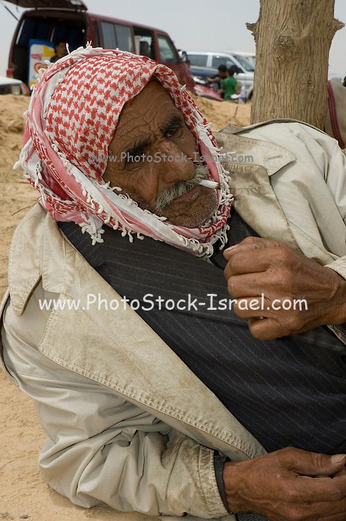 Israel, Negev desert, Bedouin festival old man resting