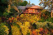"Matangi Private Island Resort ""Treehouse"" guest lodging, Fiji."