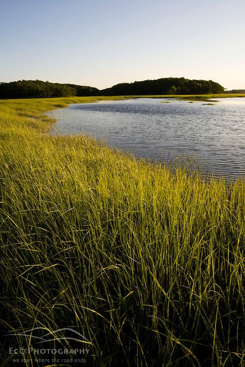 Early eveniing on the salt marsh in Plum Island Sound.  Sawyer's Island, Rowley, Massachusetts.