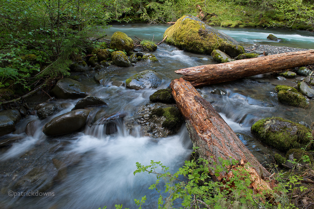 The Dungeness River: Starting high in the Olympic Mountains, the Dungeness is the second steepest river in the U.S., dropping 7300 feet in elevation as it flows 32 miles to the sea in Sequim, WA.