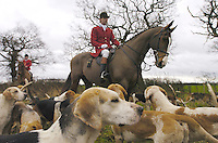 The Cheshire Forest Hunt's Boxing Day meet at Lach Dennis...© Photograph by Terry Kane.tel: 07974 921 220.e: kane@eyewitnessimages.co.uk