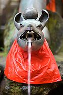A fountain shaped like a fox at the Shinto shrine at Fushimi Mountain, in Kyoto, Japan.