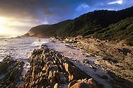 Tsitsikamma NP.South Africa