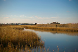 grassland and waterway in The beautiful Hamptons