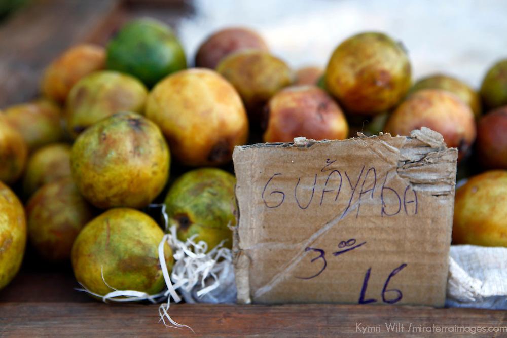 Central America, Cuba, Santa Clara. Guayaba, or guava fruit at a local farmer's market in Santa Clara, Cuba.