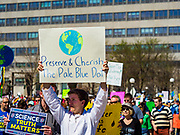 22 APRIL 2017 - ST. PAUL, MN: A marcher at the Minnesota March for Science. More than 10,000 people marched from the St. Paul Cathedral to the Minnesota State Capitol in St. Paul during the March for Science. March organizers said the march was non-partisan and was to show support for the sciences, including the sciences behind climate change and vaccines.      PHOTO BY JACK KURTZ
