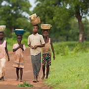Girls walk back home from picking shea nuts to go get ready for school near the village of Ying, Ghana on Wednesday June 6, 2007..