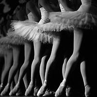 Ballerinas performing in Swan Lake