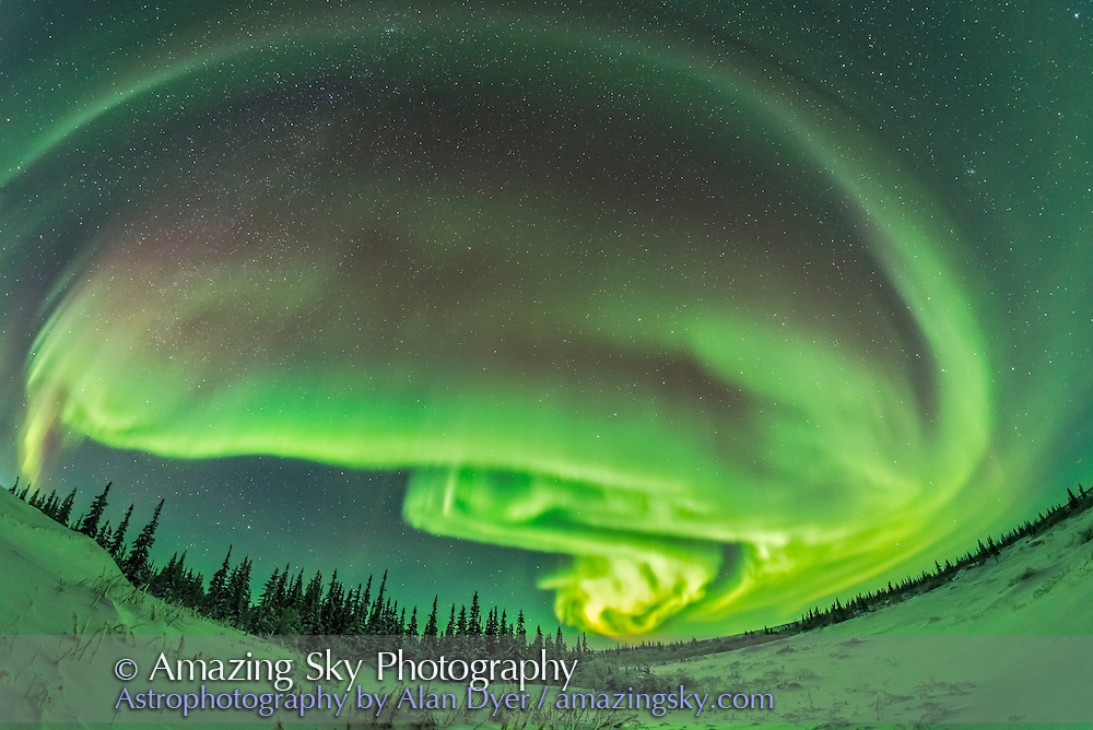 A frame from an 1100-frame time-lapse of the aurora borealis in a modest display from Churchill, Manitoba, January 27, 2017. This was toward the start of the display with the curtains well defined as a classic arc across the north along the auroral oval. Note the dark band separating arcs at top.<br /> <br /> This was with the Rokinon 12mm lens at f/2.8 for 10 seconds at ISO 3200 with the Nikon D750.