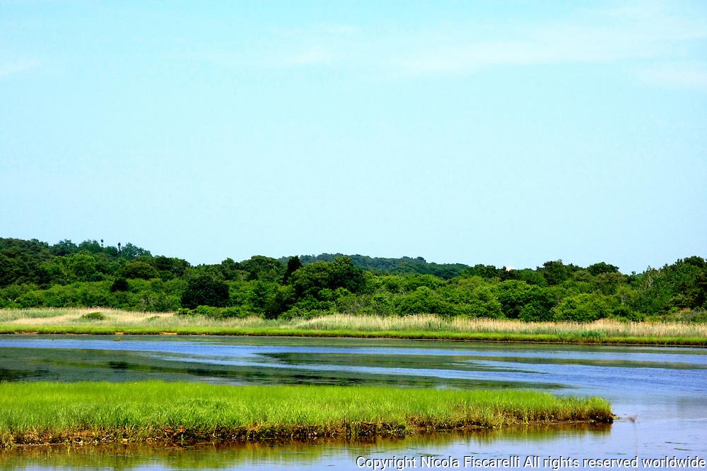 Beautiful landscapes of Wellfleet Wetlands in Cape Cod Massachusetts.