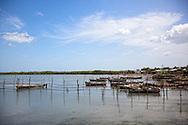 Fishing boats in Niquero, Granma, Cuba.