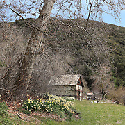 Old Ice House - Oak Glen, CA