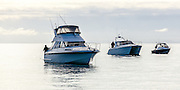 Three fishing boats in a row. Arranged large to small with men fishing off the stern of each boat.
