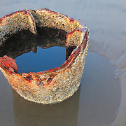 Peter Iredale Shipwreck Sunken Pipe - Dusk - Oregon Coast