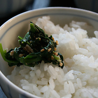 Close up of steamed rice, seaweed and sesame seeds served in Okinawa, Japan.