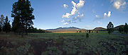 Panorama of the San Francisco Peaks at sunrise from a meadow in Sunset Crater National Monument