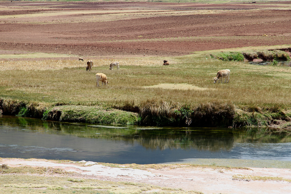 South America, Peru. Fertile landscape of an Andean valley, as seen via the Andean Explorer train journey.