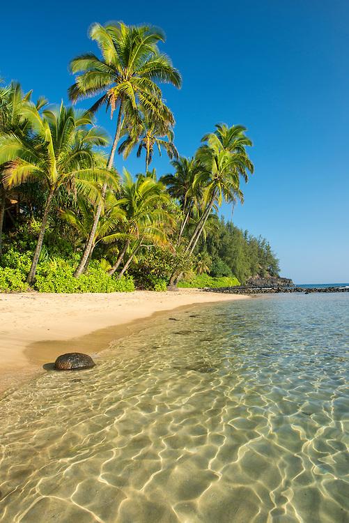USA, Hawaii, Island, Kauai,Hanalei, Na Pali Coast