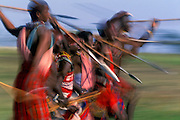 Image of Masai Mara warriors with spears, Masai Mara National Reserve in Kenya, Africa, model released
