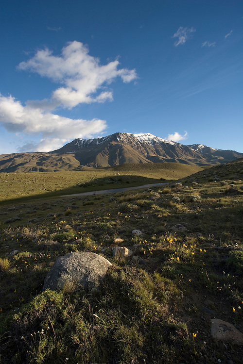 Argentina, Santa Cruz Province, Glaciares National Park, El Chalten, Morning sun lights windswept grasslands in southern Patagonia