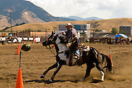 Cowboy Mounted Shooting, Bozeman Montana, Paint Horse