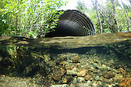 Culvert<br />