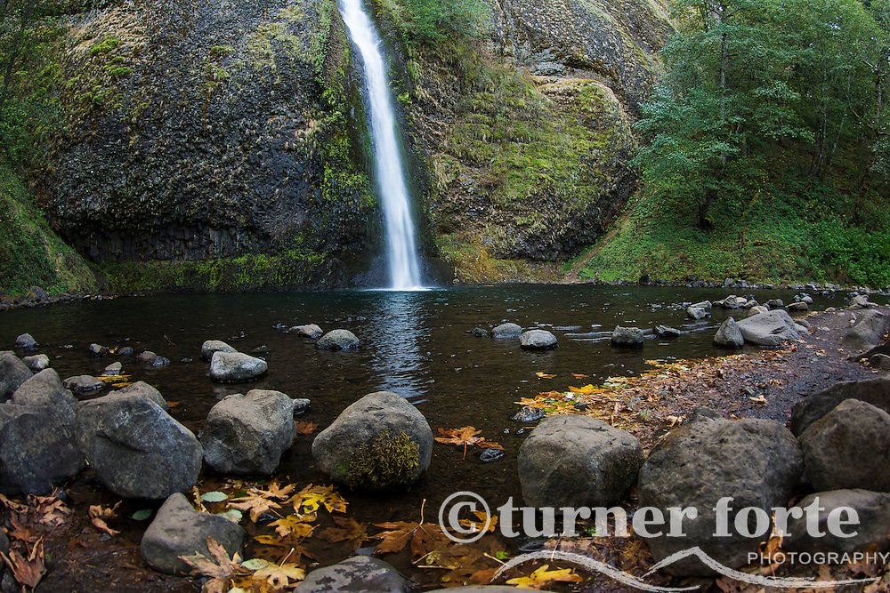 Horsetail Falls and mossy canyon wall with fall leaves on shoreline, Columbia Gorge, Oregon.