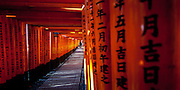 Torri. Fushimi Inari Shrine, Kyoto, Japan