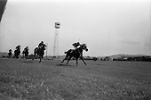 1965 - The 1965 Gold Flake Meeting at Leopardstown Racecourse