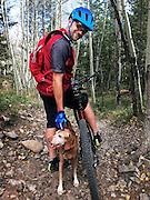 SHOT 10/2/16 1:01:01 PM - Mountain biking on the Lower Loop Trail in Crested Butte, Co. with Tanner, a 12 year old male Vizsla. (Photo by Marc Piscotty / © 2017)