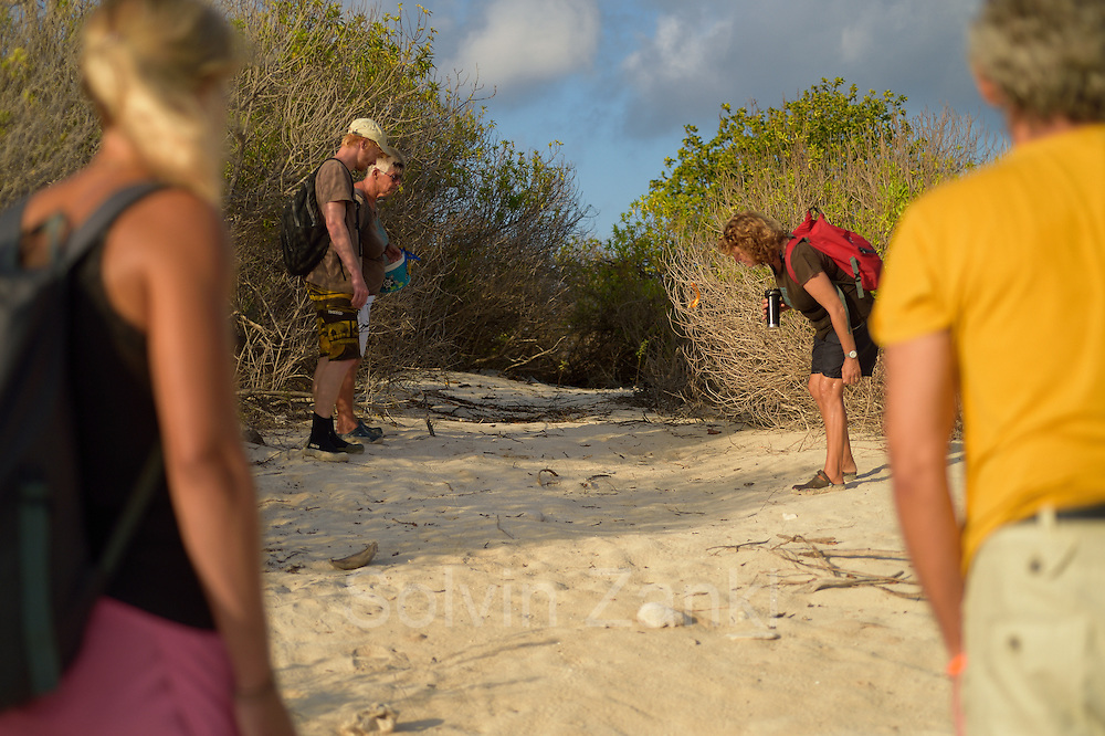 """Sea Turtle Conservation Bonaire (STCB)"" is patrolling the seaturtle beaches of ""Klein Bonaire"". Left to right: Sandra Striegel (Meeresschildkrötenforscherin, GEO Stipendium), Jurjan van der Zee, Jannie Koning (Beach Keeperin), Sue Willis (Projektkoordinatorin, STCB)"