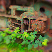 Nature And Machine - Pottsville - Merlin, Oregon - Lensbaby