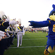 Delaware Mascot (#00) UDEE prepare The University Of Delaware marching band for the entry of  the No. 16 rank Hens, Delaware would go on to a 31-0 victory in the season opener at Delaware Stadium..