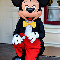 Mickey Mouse Kneeling at Disneyland in Anaheim, California<br /> This face needs no introduction, but it is fun to introduce yourself to Mickey Mouse at Disneyland in Anaheim, California.  Created by Walt Disney in the 1928 cartoon Steamboat Willie, his appearance evolved for 12 years before becoming the smiling, four-fingered, and lovable character with circular ears.  Walt Disney also gave Mickey his high-pitched voice, but don&rsquo;t expect the character to talk at the theme park.