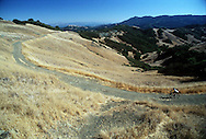 A mountain biker rides up a steep road on the way to Pine Mt., the second highest point in Marin county (Mt. Tamalpais is the highest and is seen in the background).  Mountain bicycles are restricted to fire roads and are not allowed on any of the single track hiking and horseback riding trails in the Marin Watershed area.  Wide open vistas are one of  the attractions of the ride to Pine Mountain..