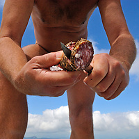 Naked hiker slicing salami for a picnic on Mt Selun, a 2200m high peak in the Churfirsten-range in the picturesque Toggenburg region of the Swiss Alps. One Canton has attempted to ban them, and elsewhere they are often harrassed, despite their activity being legal under Swiss law.