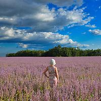 Woman standing in flower field near Valensole, , Provence,France, Europe,Model released 350