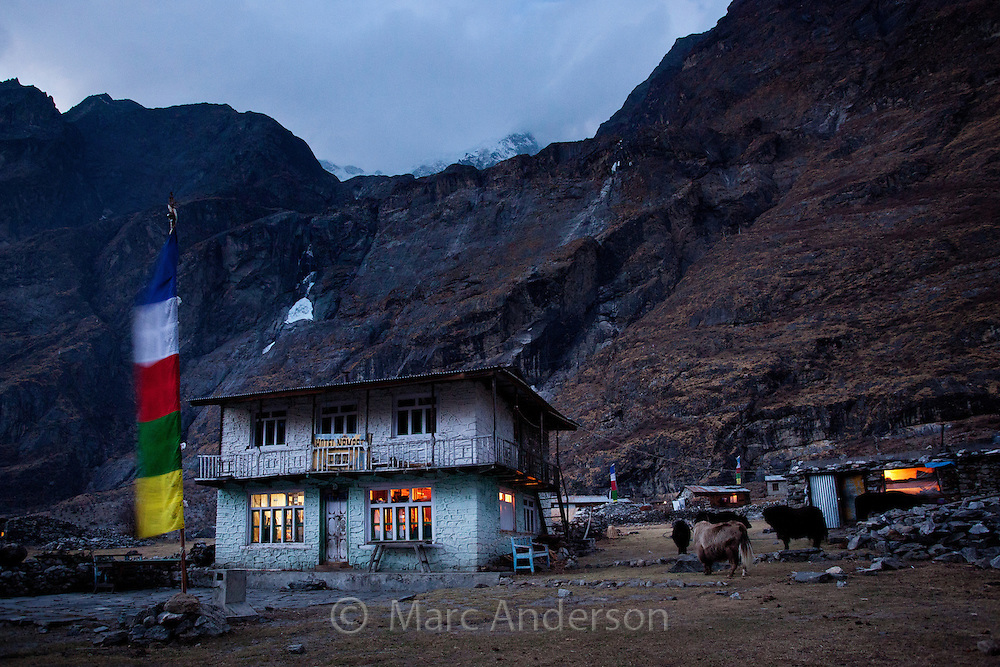 Teahouse lit up at night high in the mountains, Langtang village, Nepal
