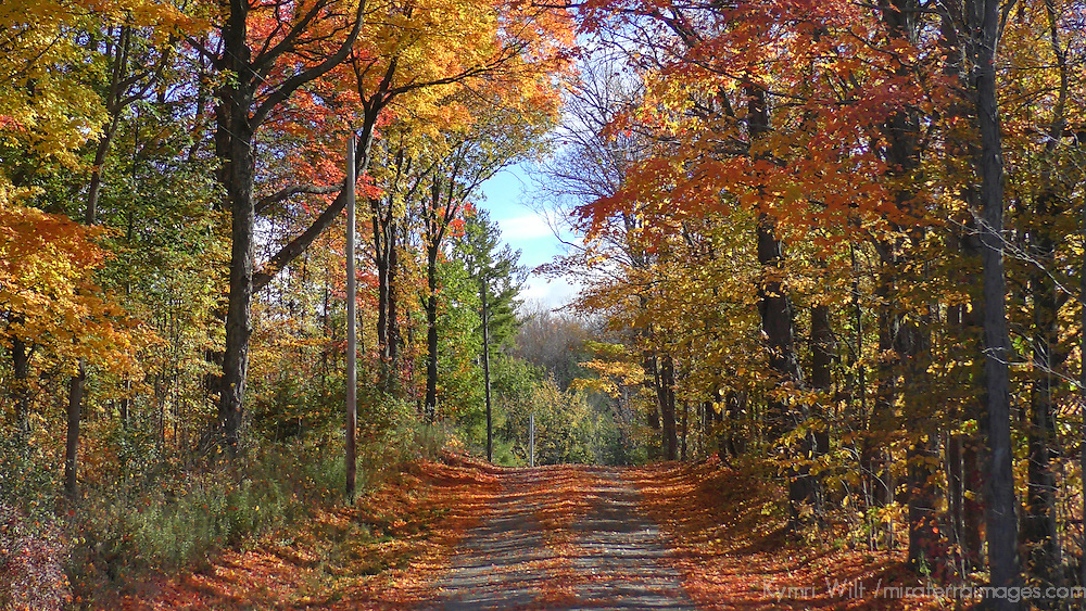 North America, USA, Vermont. Rural road in autumn in Vermont.
