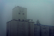 Shrouded in a heavy fog, the top of the grain elevator in downtown Friend, NE is barely visible.
