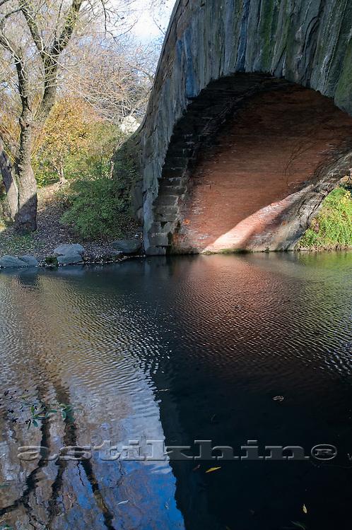 Reflection under Bridge