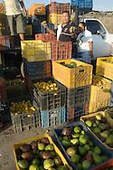 Venta de alimentos en el Mercado Municipal de Conejeros, uno de los atractivos turísticos de la isla. 2005. (Ramón Lepage / Orinoquiaphoto)  Food sale on the Market of Conejeros, one of the tourist attractions of the island. 2005. (Ramon Lepage / Orinoquiaphoto)