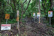 Trailhead signs for Kalalau Trail. A beautiful day hike along the slippery Kalalau Trail goes from Ke'e Beach to Hanakapiai Beach, with a rougher side trip to impressive Hanakapiai Falls, in Na Pali Coast State Wilderness Park on the island of Kauai, Hawaii, USA. To reach Hanakapiai Valley's waterfall, follow the signed clay trails for a moderately strenuous 8.8 miles round trip with 2200 feet cumulative gain (measured on my GPS), and bring plenty of fresh water. I recommend boots with sturdy tread, hiking poles, plus water shoes for the several stream crossings. Arrive early to get parking at the trailhead in Haena State Park at the end of the Kuhio Highway (Hawaii Route 560). The gorgeous Kalalau Trail was built in the late 1800s to connect Hawaiians living in the remote valleys. No permit is needed for day hiking to Hanakapiai Falls. But hikers going onwards from Hanakapiai Beach to Hanakoa and Kalalau Valleys require a camping permit from the Hawaii Department of Land and Natural Resources (HDLNR).