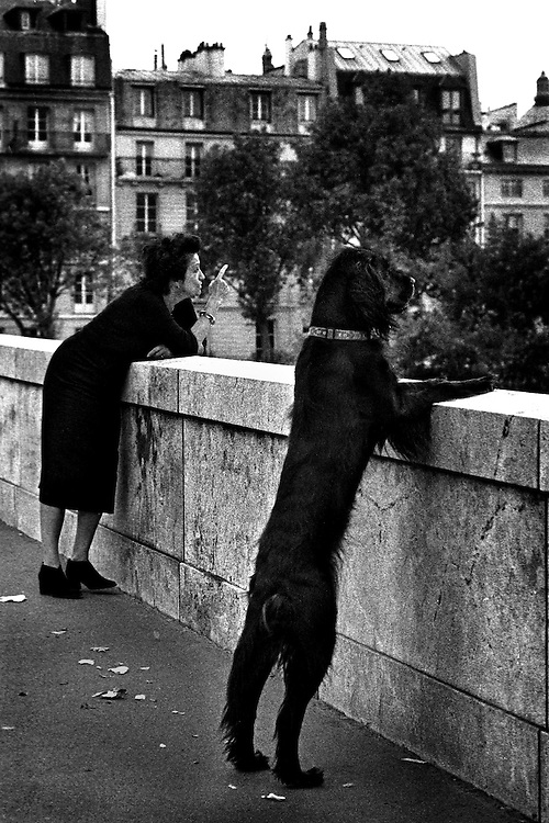 A woman with her dog on the Pont de la Tournelle, Paris. The picture was awarded first prize in the Swedish Picture of the Year competition.